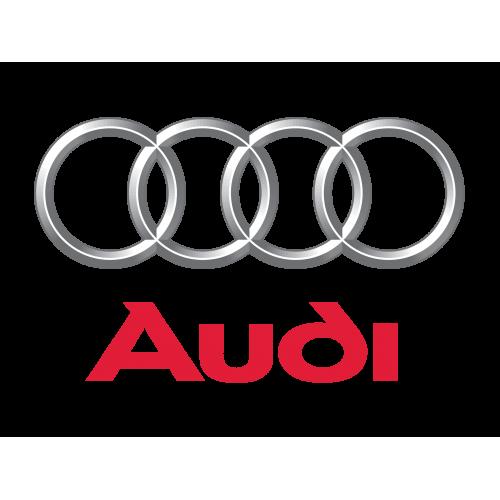Эксклюзивная подборка прошивок на автомобили марки AUDI купить прошивки для чип-тюнинга