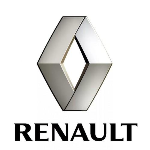 Комплект прошивок для чип-тюнига автомобилей Renault Megane, Fluence с ЭБУ EMS3110 (EMS3130) от RSW
