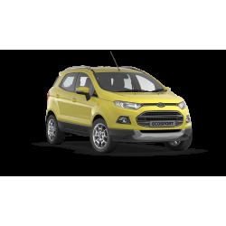 Ford EcoSport 1.6 с ЭБУ Continental EMS 2211 от Паулюса 2017